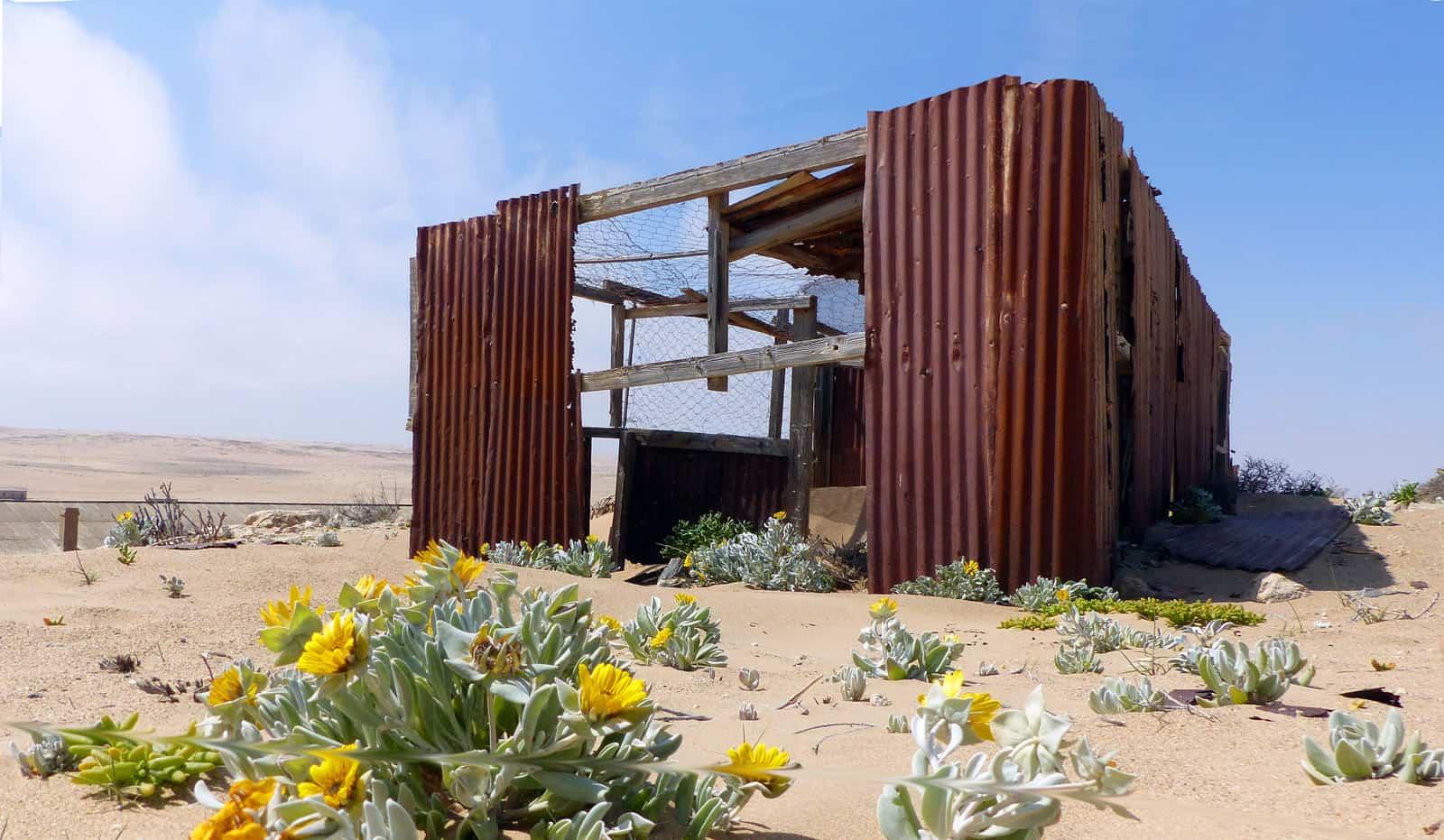 Kolmanskop Nature