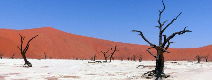 Dead Vlei at Sossusvlei, Namibia