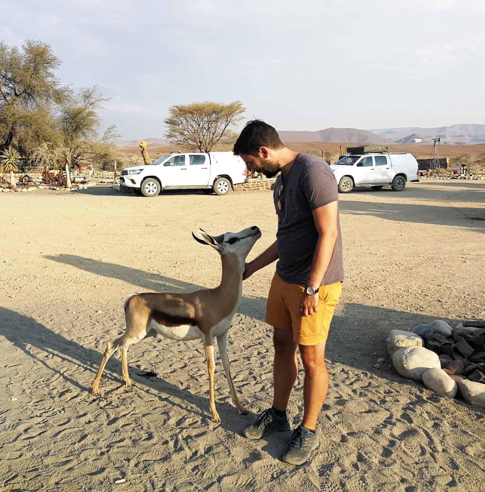 Tsauchab Springbok