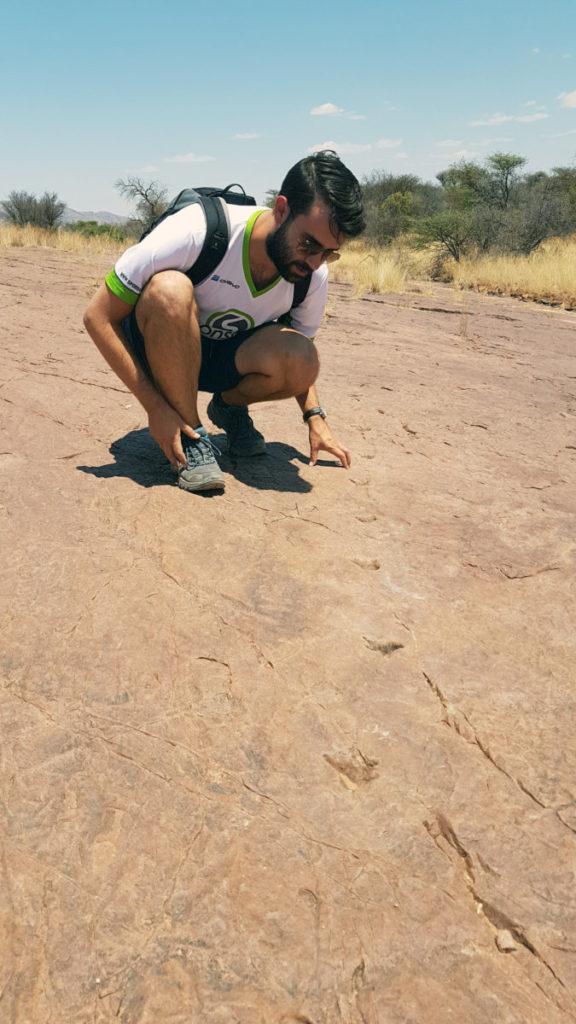 Namibia Dinosaur Tracks