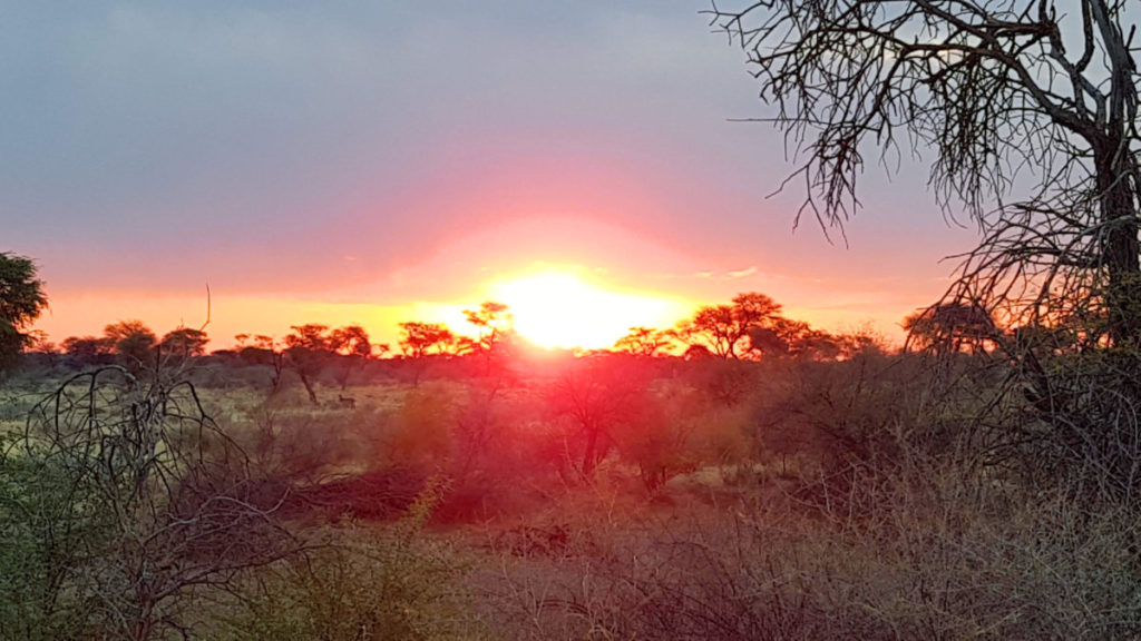 Otjiwa Sunset